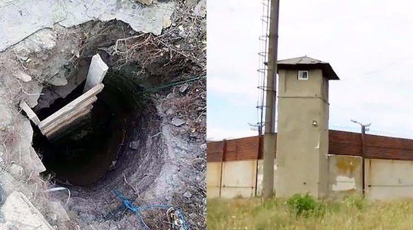 Cfarë historie! Nëna e dëshpëruar gërmon një tunel nën tokë për të shpëtuar të birin, ja çfarë gjen..