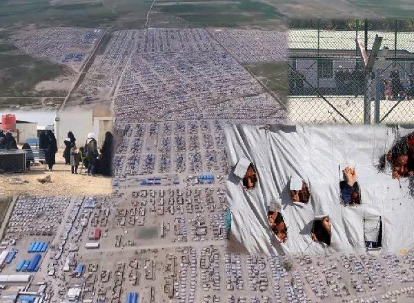 Edi Rama jep lajmin e mirë/  5 gra dhe 14 fëmijë shqiptare  shpetohen  nga kampet e Sirisë