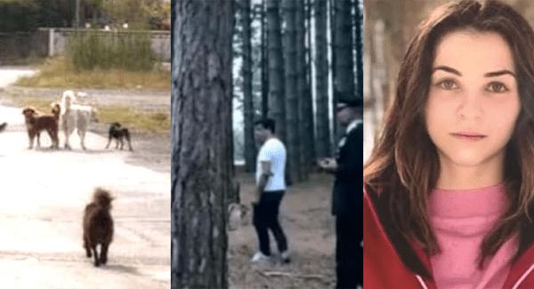 E zeza nënë/ 20-vjecaren e zunë qentë e lanë pa jetë: I dashuri i saj iku dhe e la aty…